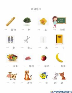 Interactive worksheet 量词练习