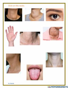 Interactive worksheet Identify neck