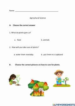 Interactive worksheet Caring for our plants