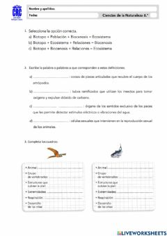 Interactive worksheet Unidad 2.2-Naturales 6º