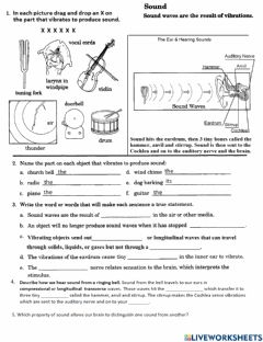 Interactive worksheet PS-16-02-Sound Vibrations