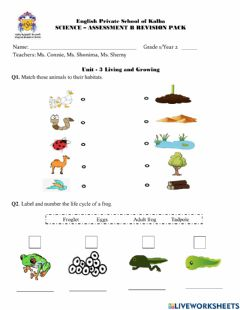 Interactive worksheet Revision Unit 3 Living and growing