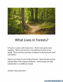 Ficha interactiva What Lives in the Forest?