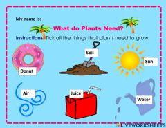 Interactive worksheet What do Plants need?