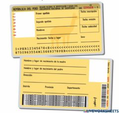 Ficha interactiva Documento de Identidad