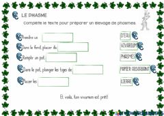 Interactive worksheet Le phasme 4