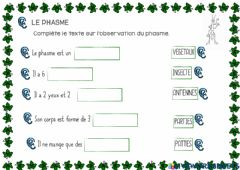 Interactive worksheet LE phasme 6