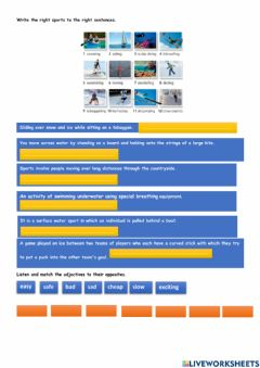 Interactive worksheet Water sports and winter sports