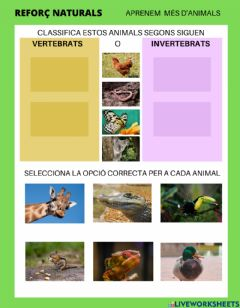 Ficha interactiva ANIMALS VERTEBRATS I INVERTEBRATS