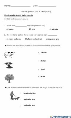 Interactive worksheet Plant & Animal Products