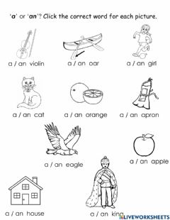 Interactive worksheet A or an