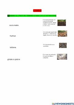Interactive worksheet Suolo1