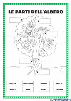 Interactive worksheet Le parti della pianta