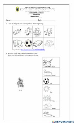 Interactive worksheet TR - I Science Exam