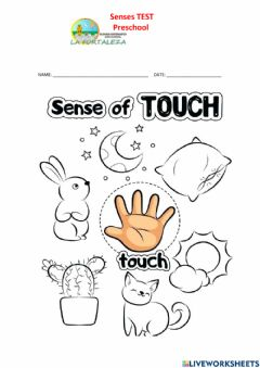 Interactive worksheet Taste and touch senses