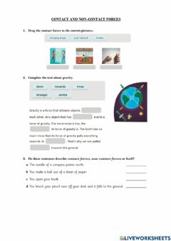 Interactive worksheet Contact and Non-contact Forces