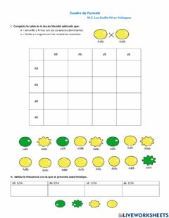 Interactive worksheet Cuadros de Punnett