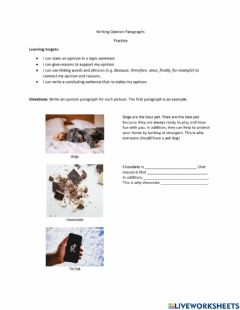 Interactive worksheet Writing Opinion Paragraphs Practice