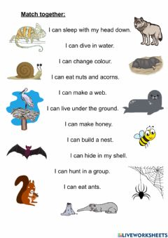 Interactive worksheet What can animals do? 2