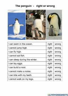 Interactive worksheet The penguin - right or wrong