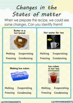 Interactive worksheet Change in state of matter