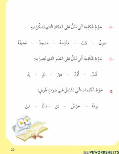 Interactive worksheet ص23