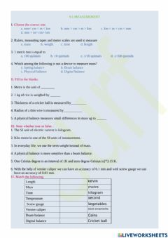 Interactive worksheet 9.1.measurement