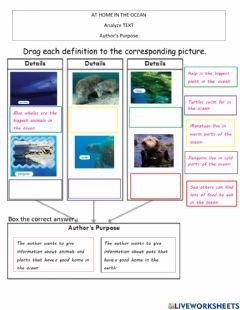 Interactive worksheet At home in the ocean