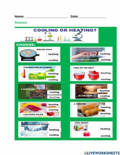 Interactive worksheet Heating and Cooling