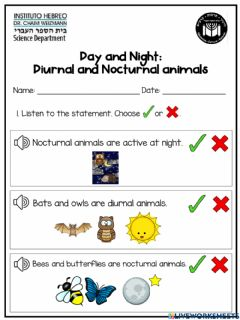 Ficha interactiva Day and Night: Diurnal and Nocturnal animals