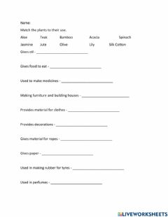 Interactive worksheet Plant Uses