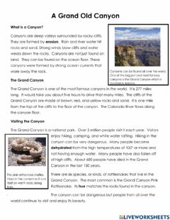 Ficha interactiva Nonfiction Review -A Grand Old Canyon-