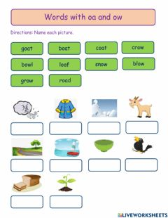 Ficha interactiva Words with oa and ow