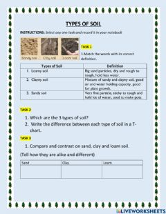 Interactive worksheet Types of soil