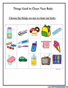 Interactive worksheet Keeping clean, Personal hygiene
