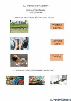 Interactive worksheet Uses of water
