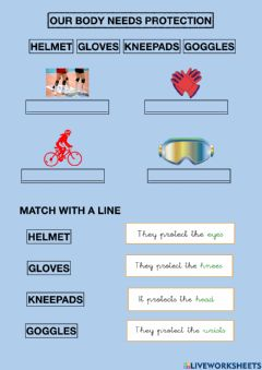 Interactive worksheet Our body needs protection