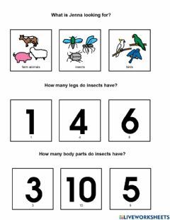 Interactive worksheet Are You An Insect?