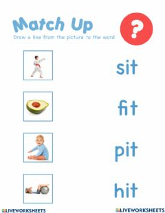 Interactive worksheet It word family