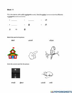 Interactive worksheet Matching Words to Pictures