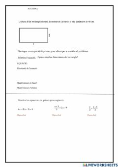 Interactive worksheet Problemes 4