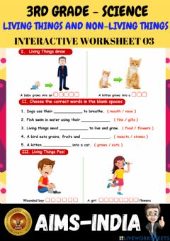 Interactive worksheet 3rd-science-ps03-living things & non living things