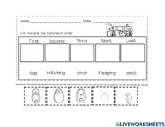 Interactive worksheet Penguin Life Cycle