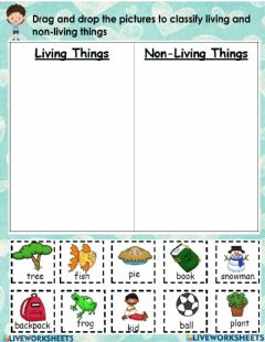 Interactive worksheet Living or non-living