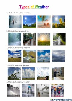 Interactive worksheet Types of Weather1