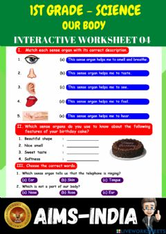 Interactive worksheet 1st-science-ps04-our body