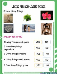 Interactive worksheet Living Non-Living Things 1G
