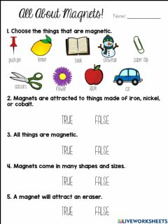 Interactive worksheet Magnets