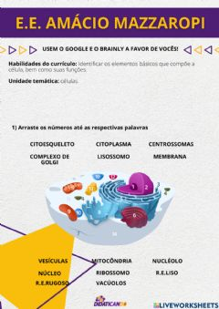 Interactive worksheet CITOLOGIA 2