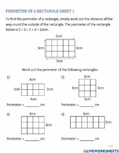 Interactive worksheet Find the perimeter of squares